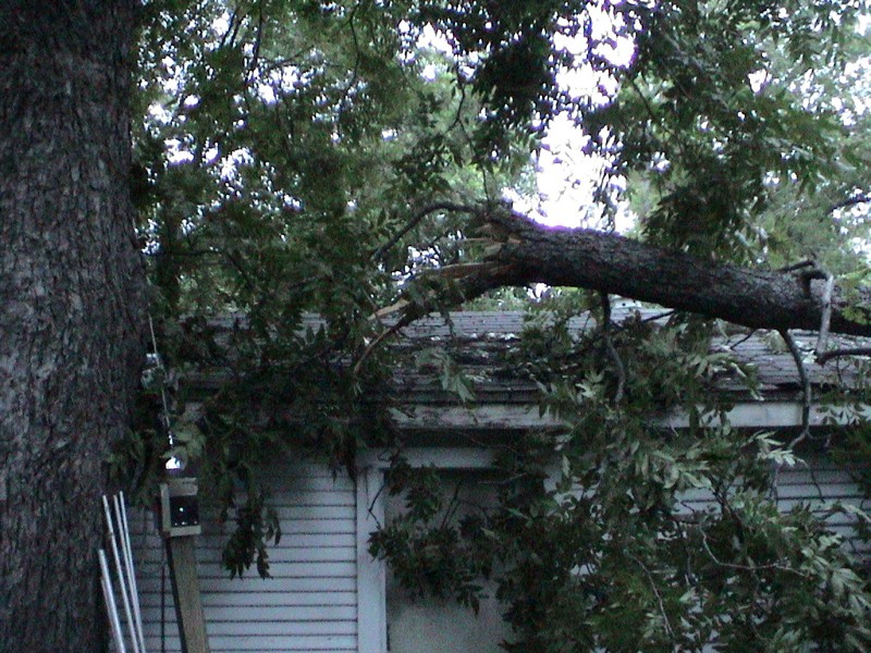 Storm-limb-on-garage