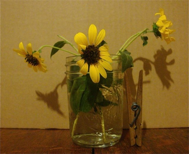 Sunflowers-jellyvase:clothespin