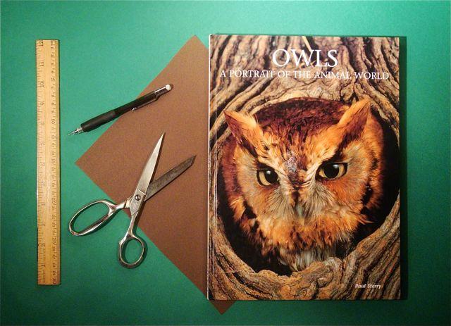 Scrapbook-owlscover-display