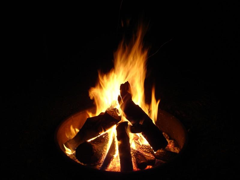 Palmetto07b-campfire