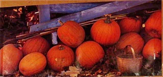 Scrapbook-pumpkins