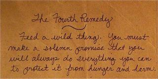 Wildanimals-fourthremedy